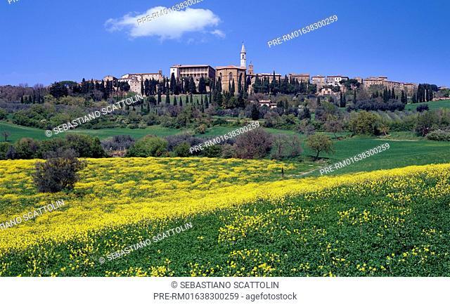 View of Pienza city, Tuscany, Italy, Europe / Blick auf Pienza, Toskana, Italien, Europa