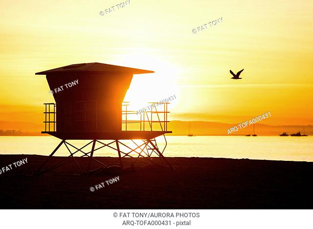Lifeguards cabin silhouette at sunrise with bird flying by