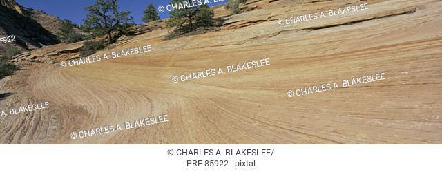 Navajo Sandstone Formation Zion National Park UT