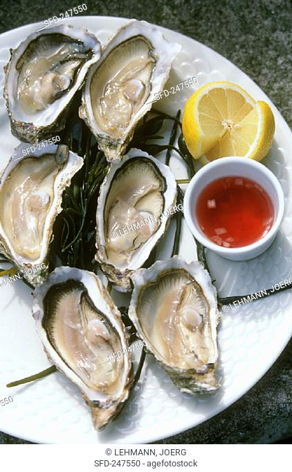 Fresh oysters with sauce and lemon