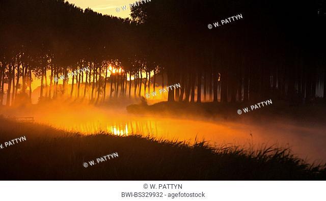 river scenery in sunrise, Belgium, Flanders, Damse Vaart, Damme
