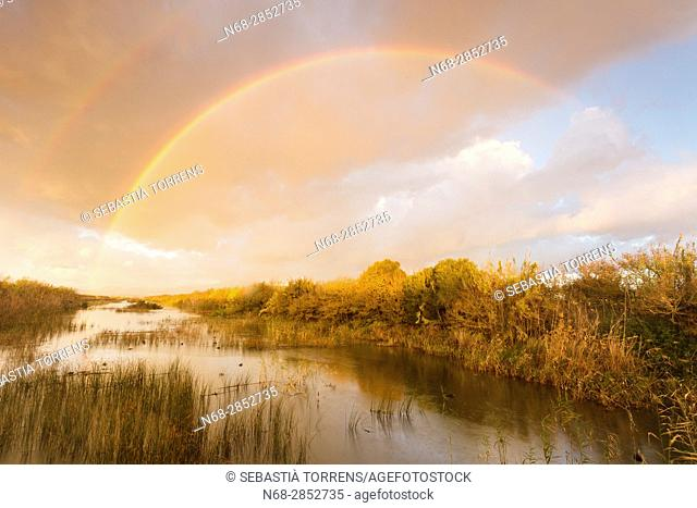 Rainbow over PN s'Albufera, Majorca, Balearic Islands, Spain