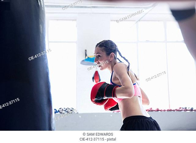 Determined young female boxer boxing at punching bag in gym