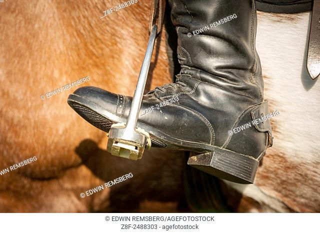 Close-up of a riding boot in stirrups in Baltimore County, MD USA