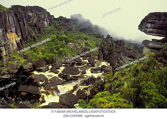 River on top of Auyantepuy that originates Angel Falls, now also called Kerepakupai-meru, highest waterfall in the world. Canaima National Park