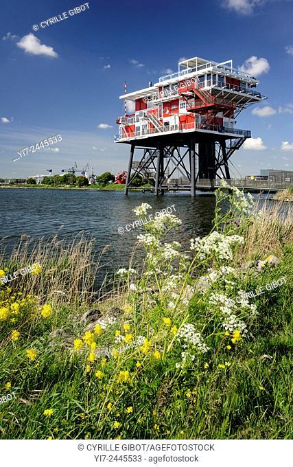 Platform in the port of Amsterdam, Westpoort, Westelijk Havengebied, Netherlands