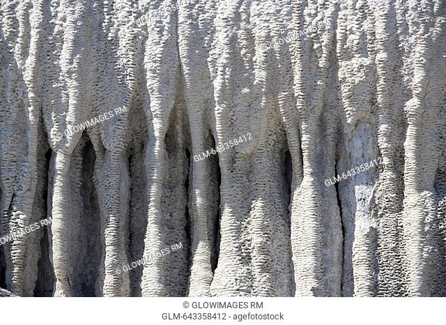 Close-up of limestone rock formation, Minerva Terrace, Mammoth Hot Springs, Yellowstone National Park, Wyoming, USA