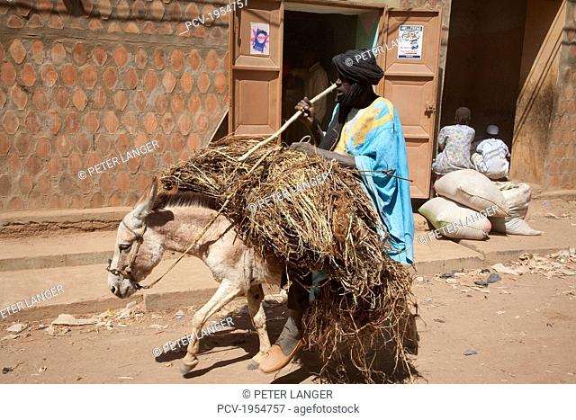 Man and donkey laden with hay at the Monday Market, Djenne, Mali