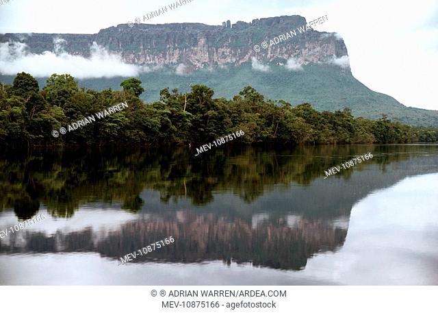 Auyantepui (Auyantepuy, Devil's Mountain) from Carrao River. Canaima National Park, Venezuela, South America
