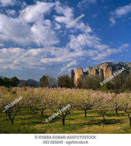 Riglos. Huesca. Spain