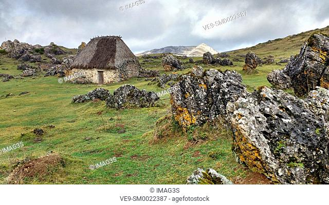 Teito (typical dwelling) in the 'braña' of La Chamera, Somiedo Natural Park. Asturias. Spain