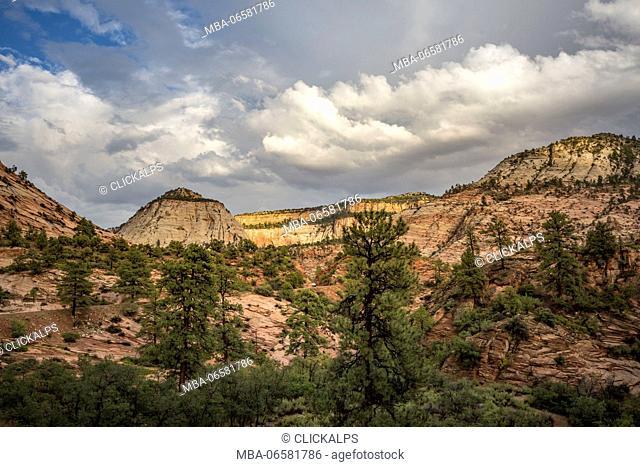 Landscape from Zion Canyon Scenic Drive, Zion National Park, Hurricane, Washington County, Utah, USA