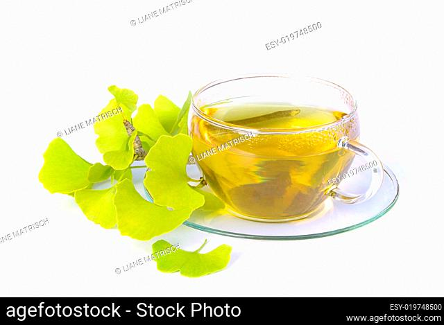 Tee Ginkgo - tea ginkgo 06