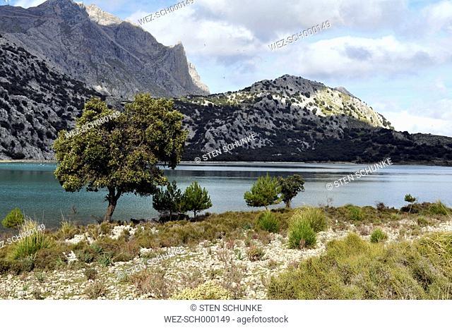Spain, Balearic Islands, Mallorca, Serra de Tramuntana