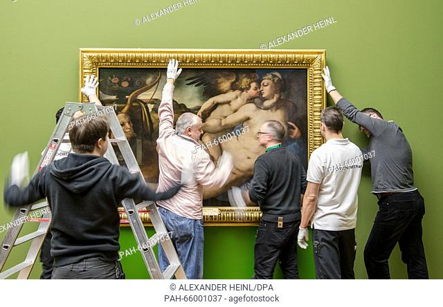 Museum staff are putting up the painting 'Venus and Amor' by Jacopo Pontormo at the Staedel Museum in Frankfurt, Germany, 19 February 2016