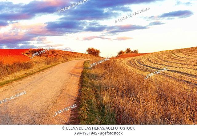 Rural landscape. Northwest of Guadalajara province. Castille La Mancha. Spain