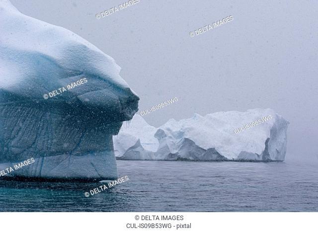 Snowfall over icebergs in Portal Point, Antarctica