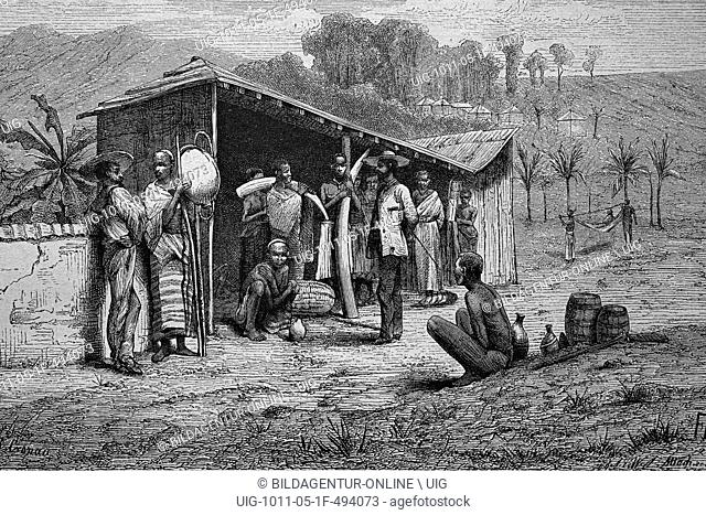 Ivory traders on the west coast of africa, historical woodcut, circa 1870