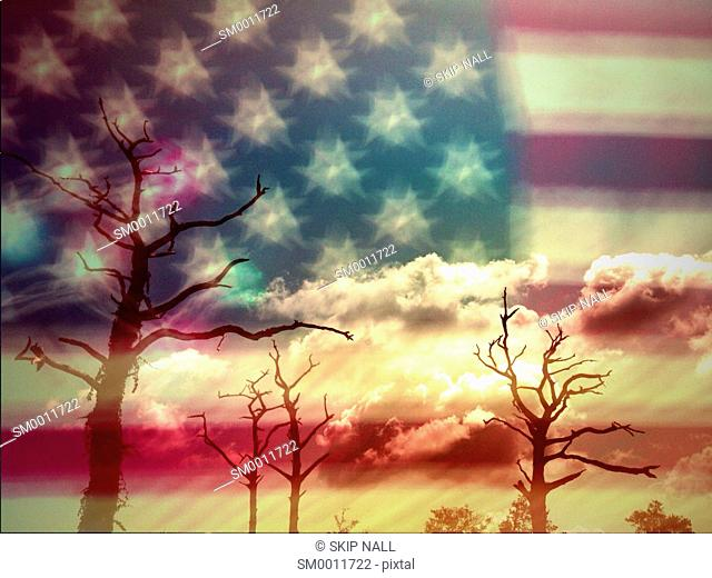A double exposure of the American Flag against barren trees