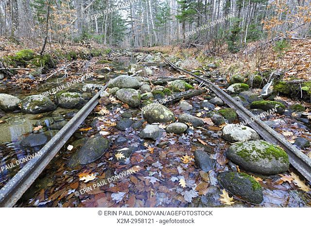 Remnants of an abandoned spur line of the Wild River Railroad in Bean's Purchase, New Hampshire. This was a logging railroad in operation from 1891-1904