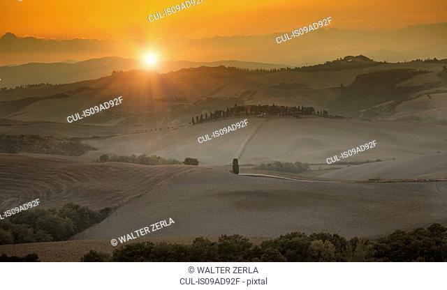 Rural scene, Siena, Valle Orcia, Tuscany, Italy