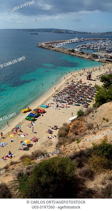 Tourists in a small beach in Puerto Portals, near Palma de Majorca, Balearic islands, Spain, Europe