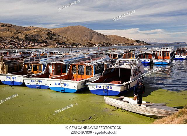 Colorful cruise boats at the harbour, Puno Region, Lake Titicaca, Peru, South America