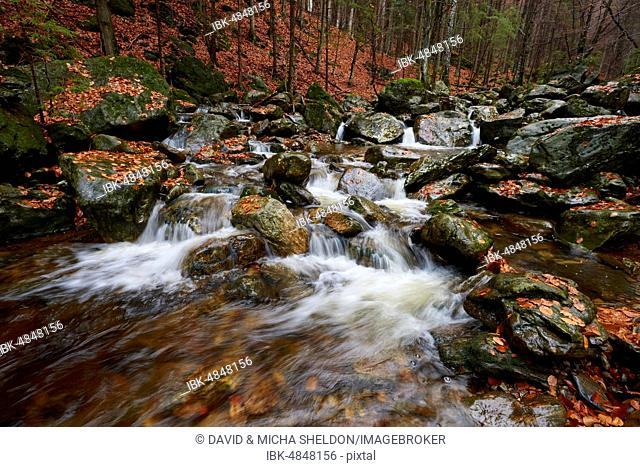 Waterfall in autumn, Rieslochfälle, Bodenmais, Bavarian Forest National Park, Bavaria, Germany