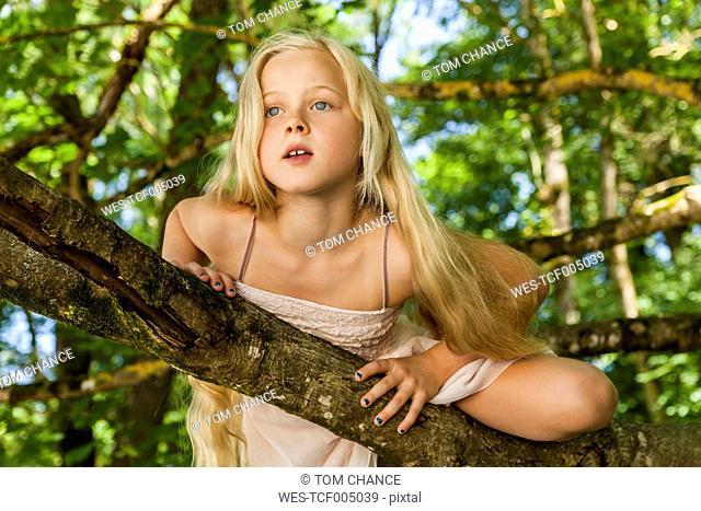 Portrait of blond little girl climbing on a tree