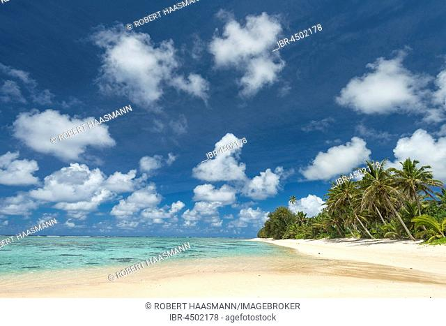 Sandy beach with palm trees, Rarotonga, Cook Islands