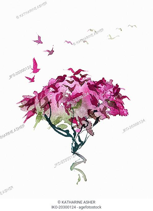 Pink tree morphing into birds flying away