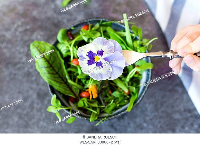 Girl's hand holding fork with pansy in front of bowl with wild-herb salad