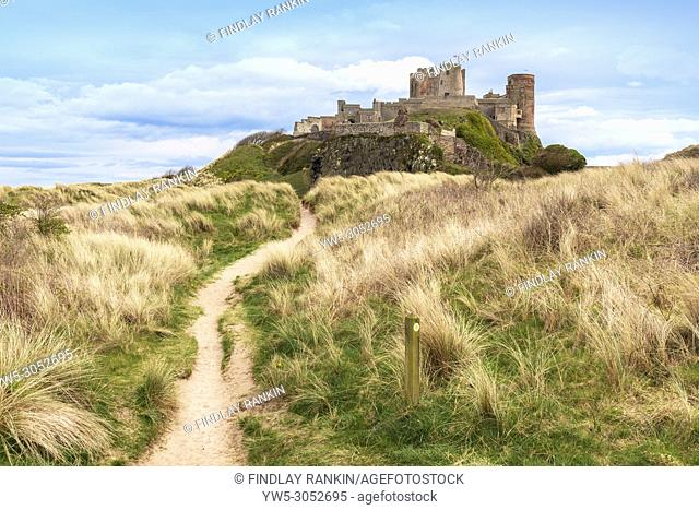 Northumberland Coastal Path and walk with Bamburgh Castle and sand dunes, Bamburgh, Northumberland, England