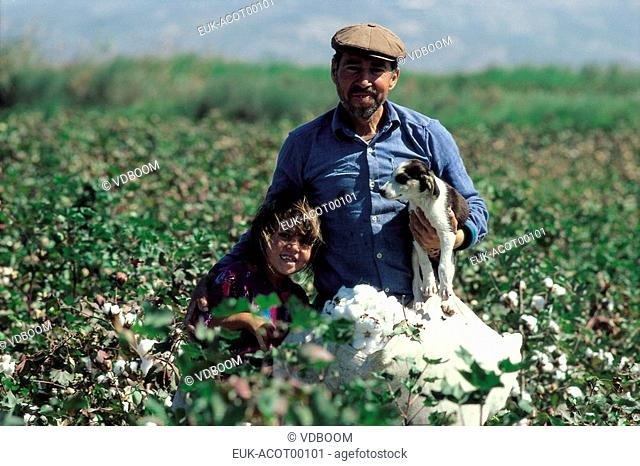 cotton,Turkey