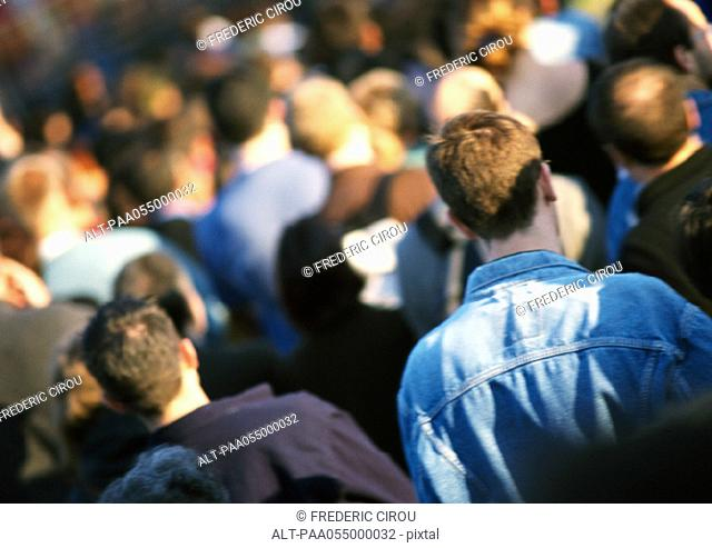 Crowd, head and shoulders, rear view, blurred, tilt
