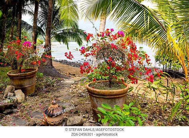 Garden in Bang Bao on Ko Chang, Thailand