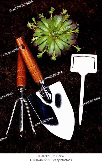 Set of garden tools, vivid bright springtime concept