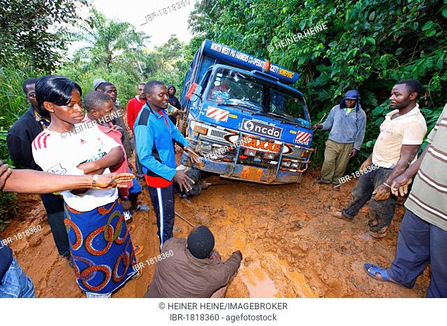 Truck stuck in the mud, jungle trail, Bamenda, Cameroon, Africa
