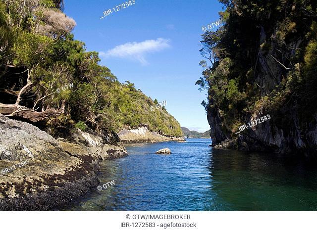 Fjordland National Park, Dusky Sound, South Island, New Zealand