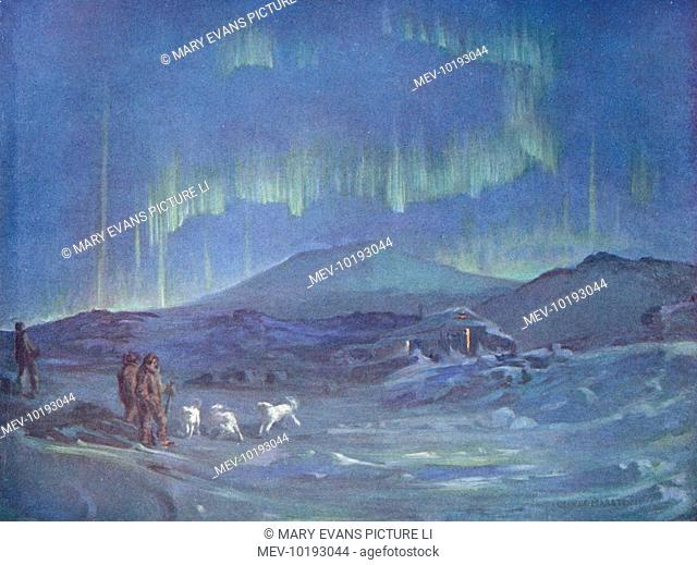 Ponies excited by the Southern Lights