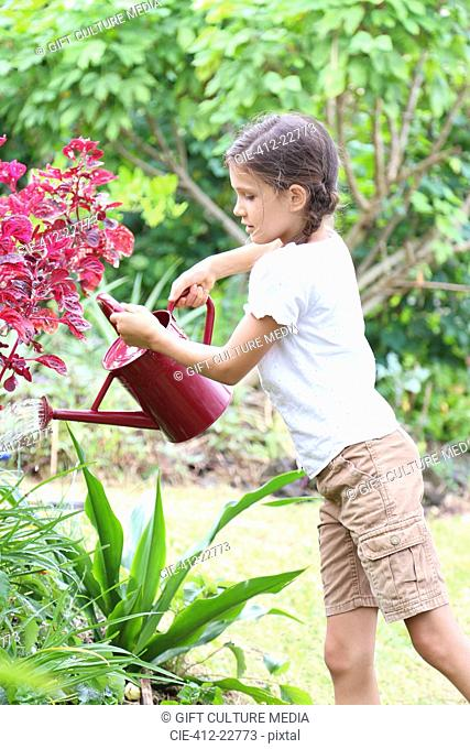 Girl watering plants in garden with red watering can