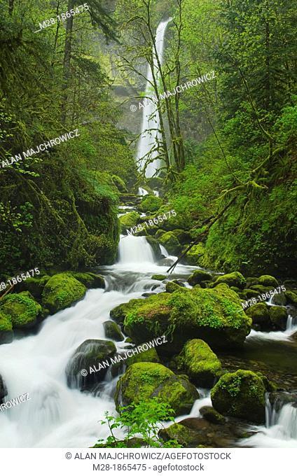 Elowah Falls and McCord Creek, Columbia River Gorge National Scenic Area, Oregon