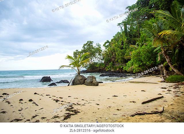 Beautiful beach. Isla Bastimentos, Bocas del toro, Panama