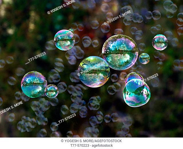 Bubbles of liquid soap spread in air. Pune, Maharashtra, India