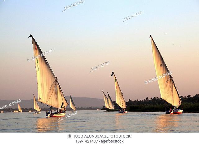 Falucas in the Nile river Egypt