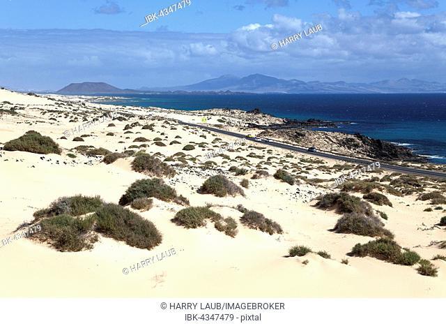 Road FV 1 in the wandering dunes El Jable, Las Dunas de Corralejo, Corralejo Natural Park, behind the island of Los Lobos and Lanzarote, Fuerteventura