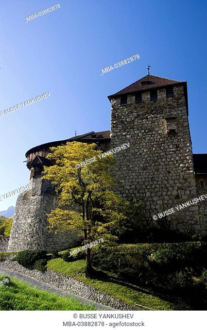 Principality Liechtenstein, Vaduz, prince-palace, detail