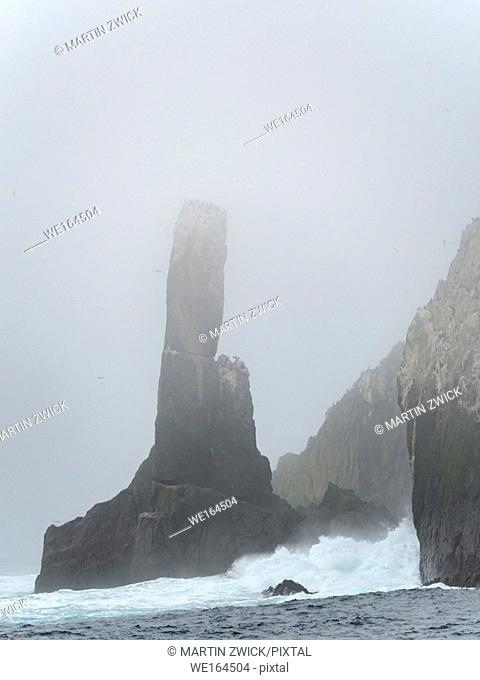 The Shag Rocks close to South Georgia, an unihabited group of rocky islands in the southern ocean. Rookery of Imperal Shags (Phalacrocorax albiventer oder...