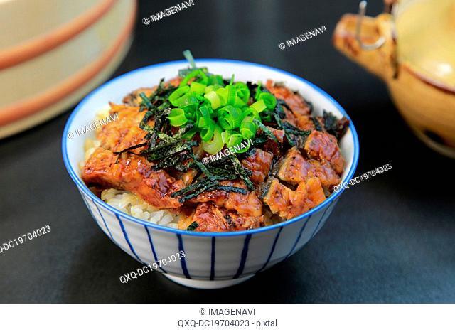 Hitsumabushi (Grilled eel on the rice)