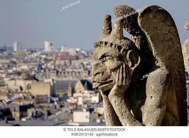 Gargoyles, Notre Dame Cathedral, Paris, France